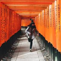 1 Day in Kyoto - The Top 5 Must Sees
